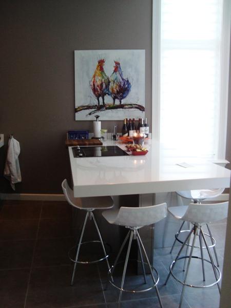 Italiaanse design keuken Snaidero Tecnica en Zeta te Utrecht/ projekt ...